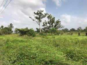 Perceel te koop aangeboden aan de Invejaweg zijstraat van de maganta kanaalweg- aangeboden door makelaars in Suriname