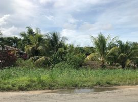 Makelaar Suriname