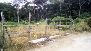 Lashkarweg
