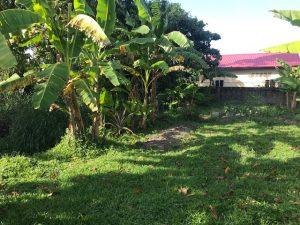 Huizen te koop in Suriname