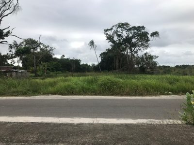 Beedigd makelaar in Suriname